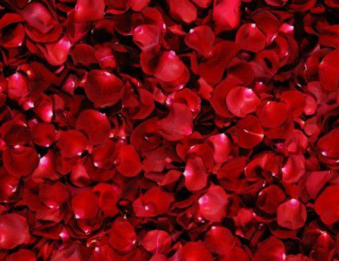 parar a menstruação